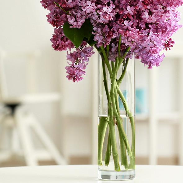glass-cylinder-vase-collection