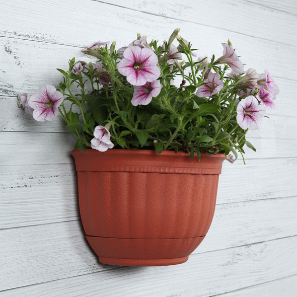 set-of-3-plastic-wall-mount-planters-snatcher-online-shopping-south-africa-28488438022303.jpg