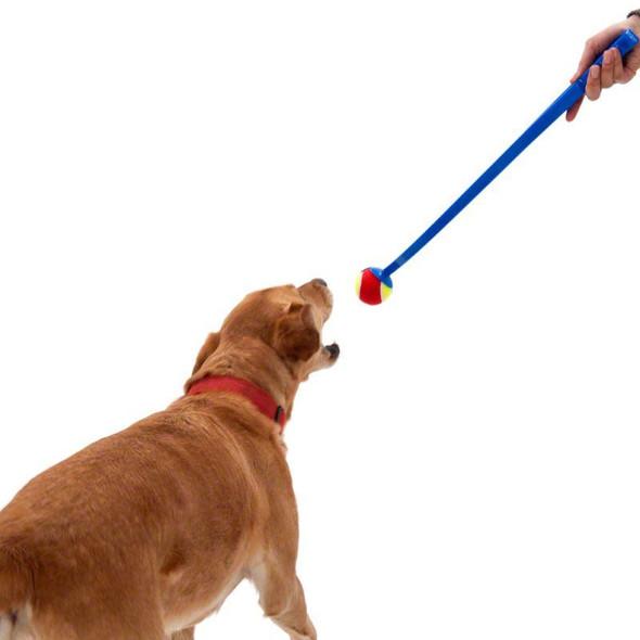 2-x-dog-tennis-ball-launchers-snatcher-online-shopping-south-africa-21681117986975.jpg