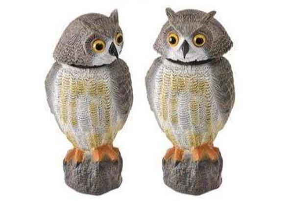 wind-action-owl-garden-ornament-snatcher-online-shopping-south-africa-20144022454431.jpg