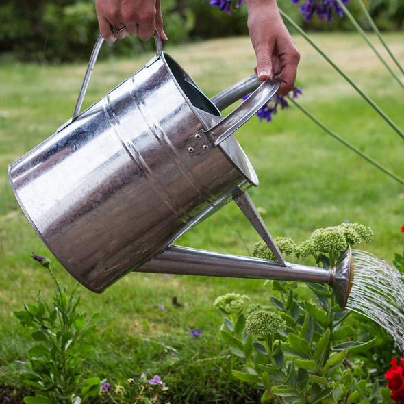 10l-galvanized-watering-can-snatcher-online-shopping-south-africa-29638950092959.jpg