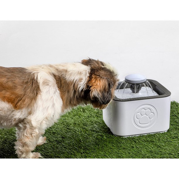 Water Fountain For Pets