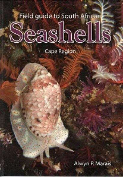 field-guide-to-south-african-seashells-cape-region-s-c-snatcher-online-shopping-south-africa-29337249185951.jpg