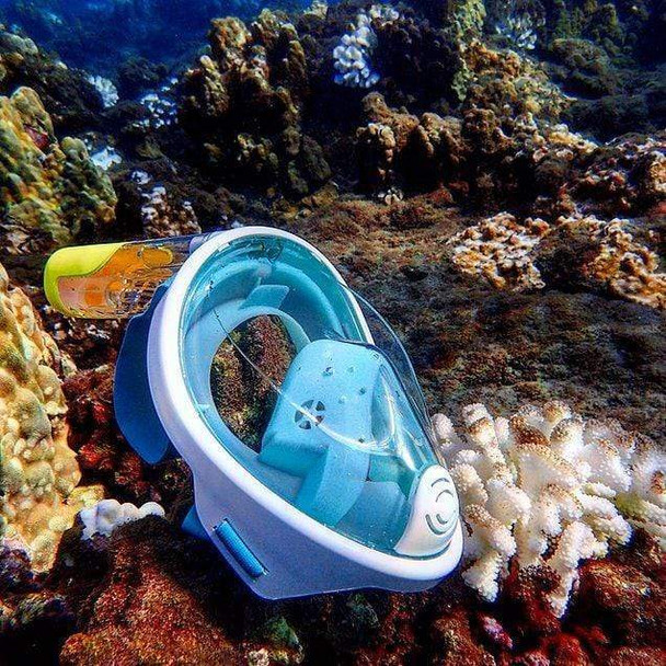 dry-dive-snorkel-full-mask-snatcher-online-shopping-south-africa-19538339758239