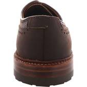 Alden Shoes Men's Atom Blucher Wingtip D1501C Walnut Utica - Back
