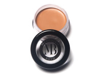Picture Perfect Foundation - Moonlight Chocolate