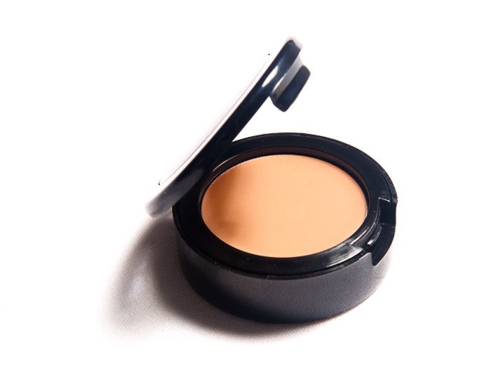 Picture Perfect Concealer