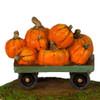 A-43 Pumpkins Aplenty - Fall Festival - LIMITED