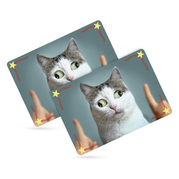 Larsic Placemats for Dog Cat 2 Pack