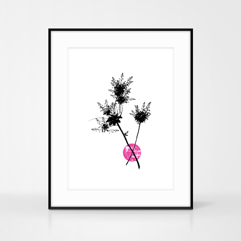 Jacky Al-Samarraie pink smoketree flower screen print shown in large black frame