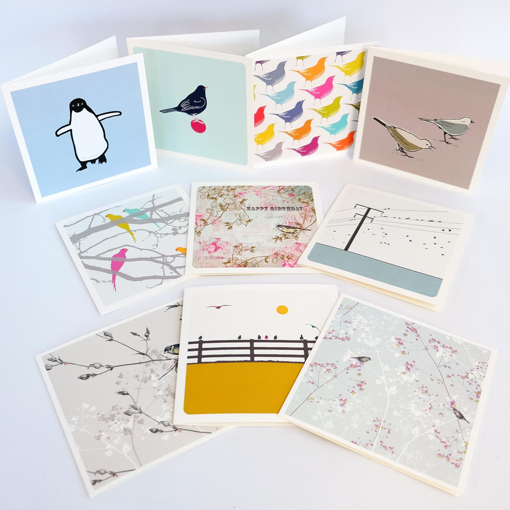 Box set of bird greeting cards by Jacky Al-Samarraie