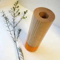Orange Wood Vase with Glass tube