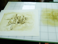 Drypoint proof on press