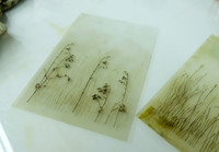 Drypoint plates