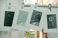 Group prints