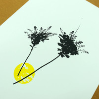 Flower screen print by Jacky Al-Samarraie - Smoketree in Black & Yellow