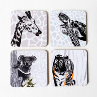 Giraffe, turtle, koala & tiger wild animal coaster set by Jacky Al-Samarraie