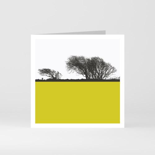 Jacky Al-Samarraie Cornwall Greeting Card of Cornish Moorland Trees
