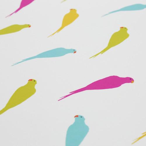 Jacky Al-Samarraie Parakeets Gift Wrap Pack
