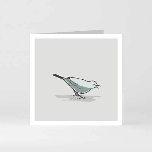 A modern graphic greeting card of a cute song thrush bird by designer Jacky Al-Samarraie