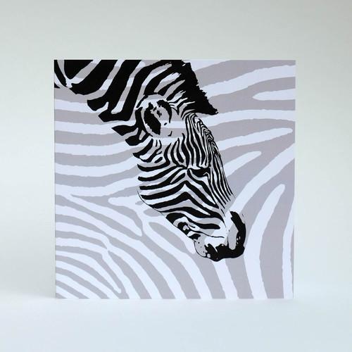 Black & white Zebra greeting card by Jacky Al-Samarraie