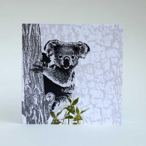 Koala greeting card by Jacky Al-Samarraie