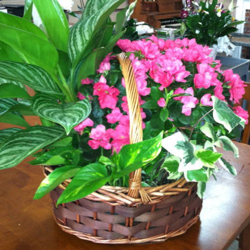 Blooming Garden Basket All Flowers and Gifts Midwood Flower Shop | Charlotte Florist Delivery Service