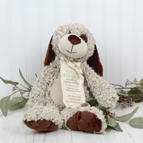 Big Bro Dog New Baby Flowers Midwood Flower Shop | Charlotte Florist Delivery Service