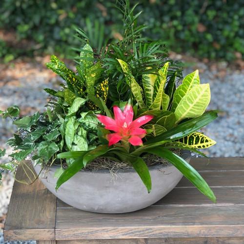 Modern European Garden Mother's Day Flowers Midwood Flower Shop | Charlotte Florist Delivery Service