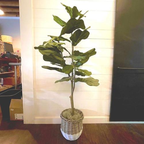 Faux Fiddle Leaf Fig Floor Plant Plants Midwood Flower Shop | Charlotte Florist Delivery Service