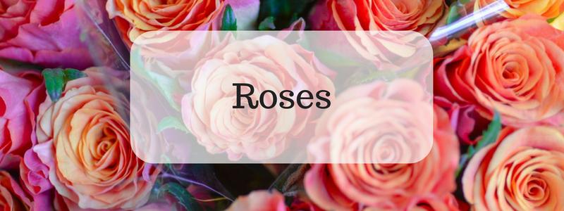 Midwood Flower Shop, Charlotte Florist Order Roses Online