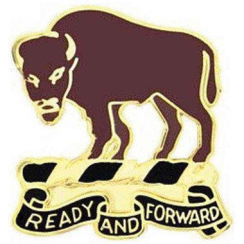 army 10th cav rgt (lt) hat lapel pin