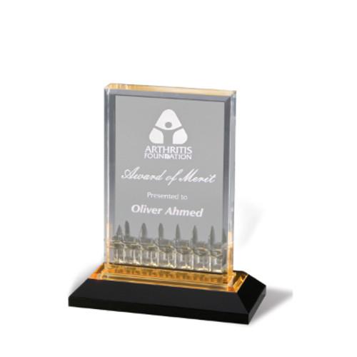 5x7 acrylic Award