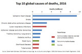 Worldwide Disease and Premature Death