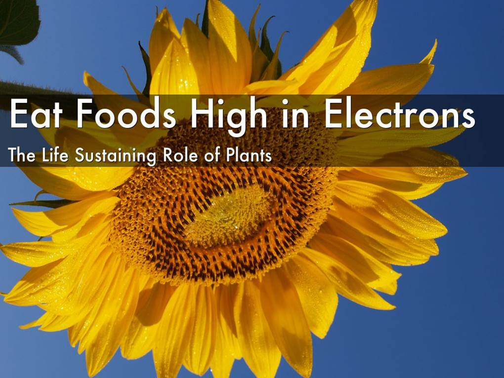 eat-foods-high-in-electrons-image.jpg