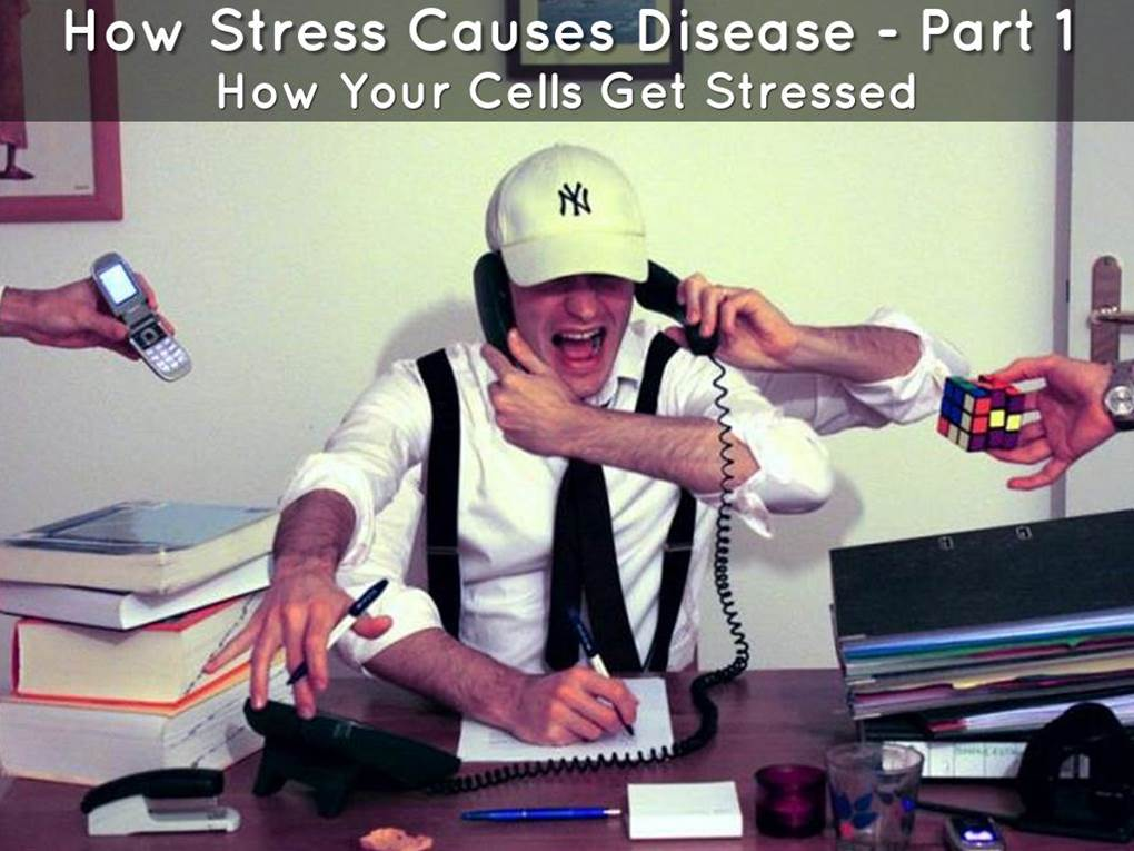 how-stress-causes-disease-part-1-image.jpg
