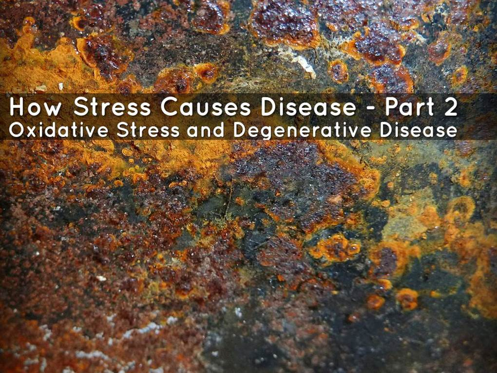 how-stress-causes-disease-part-2-image.jpg