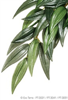 Exo-terra Silk Plant Large Ruscus {requires 3-7 Days before shipping out}