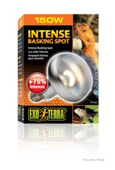 Exo Terra Intense Basking Spot Lamp 150w {requires 3-7 Days before shipping out}