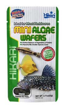 Hikari Mini Algae Wafers Sinking Mini Wafer .77oz