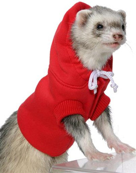 """Your ferret or small animal is sure to be a hit in this sweatshirt from Marshall."""""""