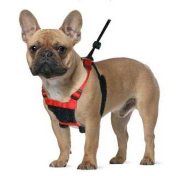 Sporn Non-pulling Mesh Harness Small Red