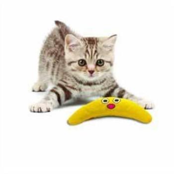PetStages Cat Green Magic Boomerang Buddy
