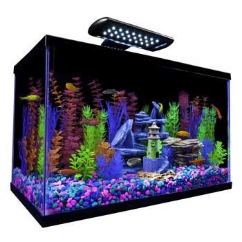 PERFECTOPf Tetra Glofish Kit 10 Gal-92285