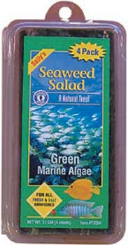 San Francisco Bay Seaweed Salad Green 4ct