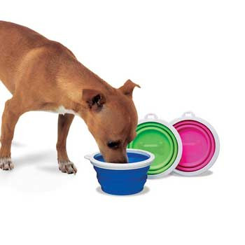 Bamboo Fat Cat Silicone Travel Bowl -1 Cup Tray
