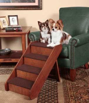 Solvit Solvit Pupstep Wood Stairs Large