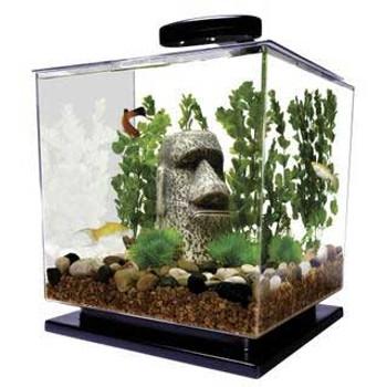 Tetra Led Cube Aquarium Kit 1.5 Gal