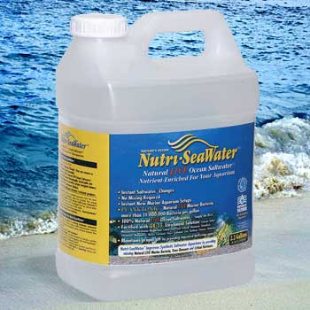 World Wide Imports Nutri-seawater 2.2 Gal Natural Live Ocean Saltwater