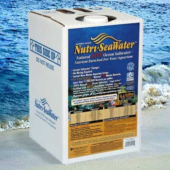 World Wide Imports Nutri-seawater Natural Live Ocean Saltwater 4.4 Gal